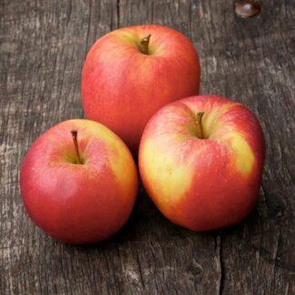 Apples (Gala)