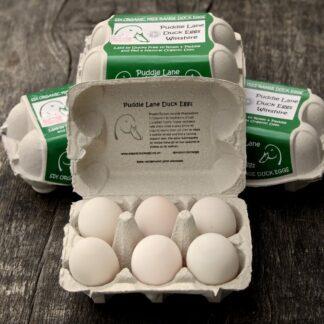 Organic Eggs from Happy Ducks