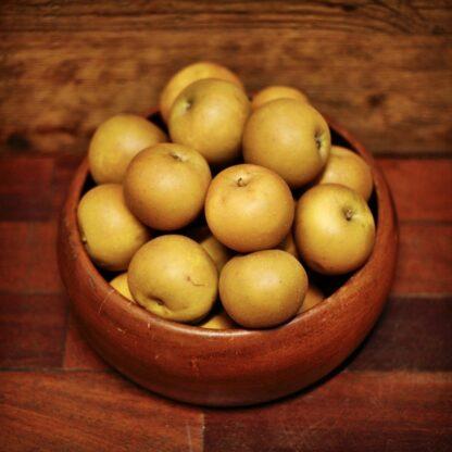 Apples - Russet (each)