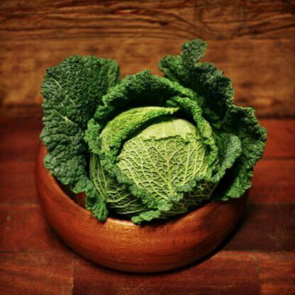 Cabbage - Savoy (each)