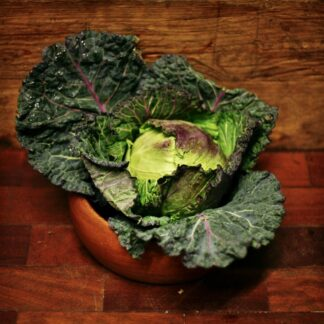 Cabbage - January King (each)