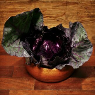 Cabbage - Red Sweetheart (each)