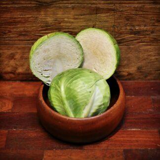 Cabbage - White